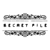 Wendy Vecchi Wood Mounted Stamp - Secret File J2-2384