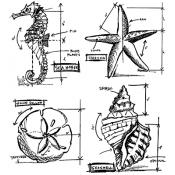Tim Holtz Cling Mount Stamps - Nautical Blueprint CMS194
