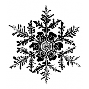 Tim Holtz Wood Mounted Stamp - Snowflake 1 H2-1584