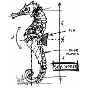 Tim Holtz Wood Mounted Stamp - Seahorse Sketch P1-2354