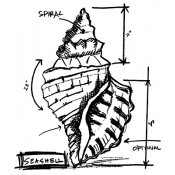 Tim Holtz Wood Mounted Stamp - Seashell Sketch P1-2355