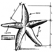 Tim Holtz Wood Mounted Stamp - Starfish Sketch P1-2356