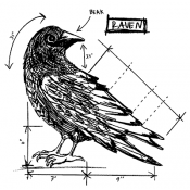 Tim Holtz Wood Mounted Stamp - Raven Sketch U2-2175